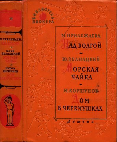 библиотека пионера